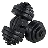 ArtSport 2er Hantelset 30kg - Kurzhantel Set mit 2 Kurzhanteln, 16 Gewichte Hantelscheiben und...