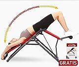 Mediashop Back Lounge | Inversions-Rücken-Trainer | Inversionsbank | Streckung der Wirbelsäule |...